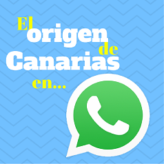 bandera-whatsapp